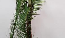 Kereszt pálmaágakkal