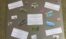 a kérdésekre ausztrál és magyar fiatalok válaszolnak