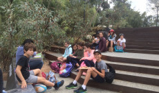 Tanulás a Kings parkban