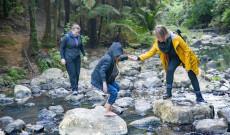 Patakon átkelés, soha nem váratlan Új-Zéland erdőiben