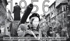 Ausztriai Magyar Pedagógusok Egyesülete