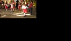 Táncoló seregélyek