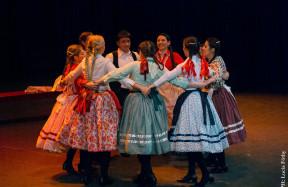 Duna Magyar Művészeti és Folklór Egyesület