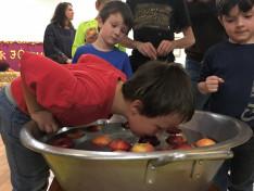 almahorgászás