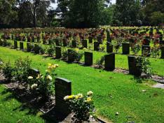 Springvale Botanical Cemetery/izraelita parcella.