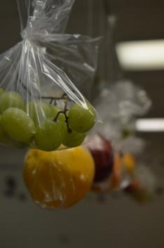 bezacskózott gyümölcsök