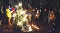 Erdei karácsony