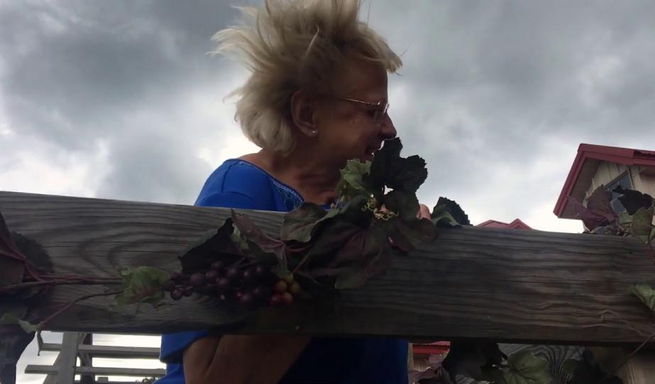 Hungarian Harvest Festival - Magyar Szüreti Fesztivál / Minneapoils/USA