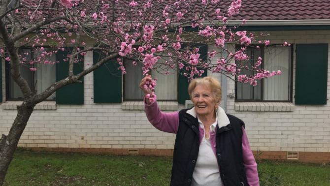 Margit néni és kedvenc fája